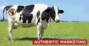Cow branded with FUEL Marketing logo.
